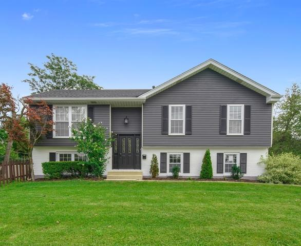 946 59th Street, Downers Grove, IL 60516 (MLS #10137098) :: Ani Real Estate