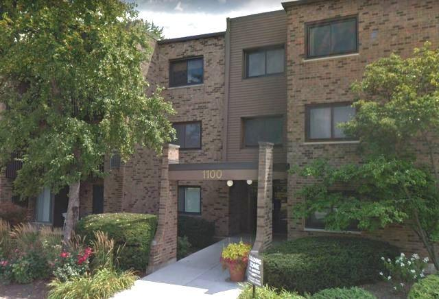 1100 E Randville Drive #210, Palatine, IL 60074 (MLS #10137116) :: Ani Real Estate