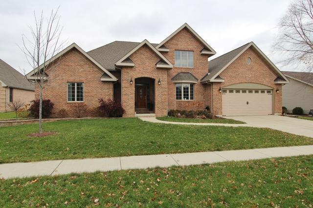 732 Edgewater Drive, Morris, IL 60450 (MLS #10137297) :: Domain Realty