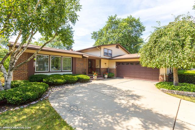 503 W Hackberry Drive, Arlington Heights, IL 60004 (MLS #10137350) :: Helen Oliveri Real Estate
