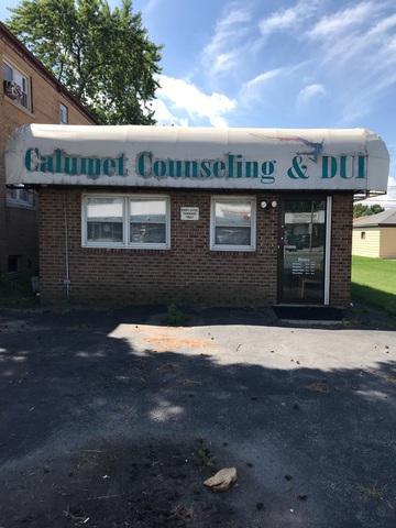 1609 Sibley Boulevard, Calumet City, IL 60409 (MLS #10137556) :: Ani Real Estate