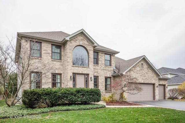 3856 Mandeville Lane, Naperville, IL 60564 (MLS #10137738) :: Domain Realty