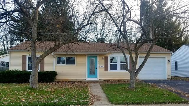 421 Montrose Drive, Romeoville, IL 60446 (MLS #10137942) :: Ani Real Estate