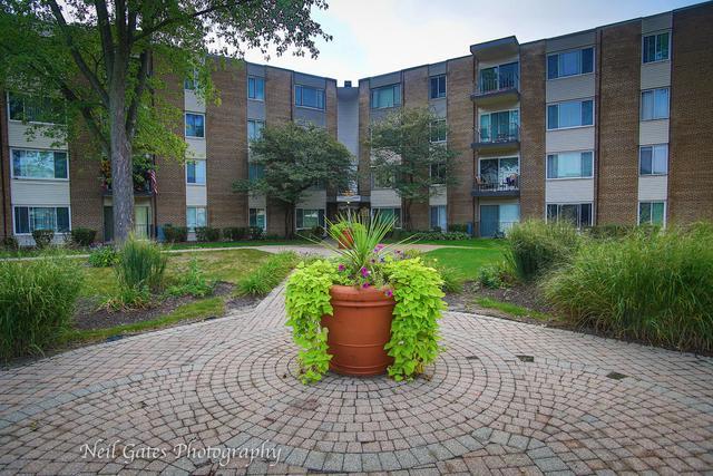 140 W Wood Street #230, Palatine, IL 60067 (MLS #10137969) :: Ani Real Estate