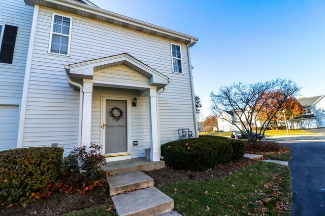 1313 Orleans Drive #1313, Mundelein, IL 60060 (MLS #10138137) :: Helen Oliveri Real Estate