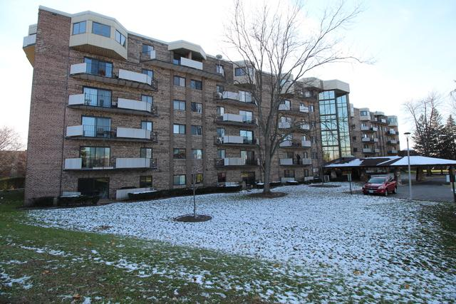 1275 E Baldwin Lane #401, Palatine, IL 60074 (MLS #10138249) :: Ani Real Estate