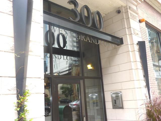 300 W Grand Avenue #203, Chicago, IL 60654 (MLS #10138270) :: Property Consultants Realty