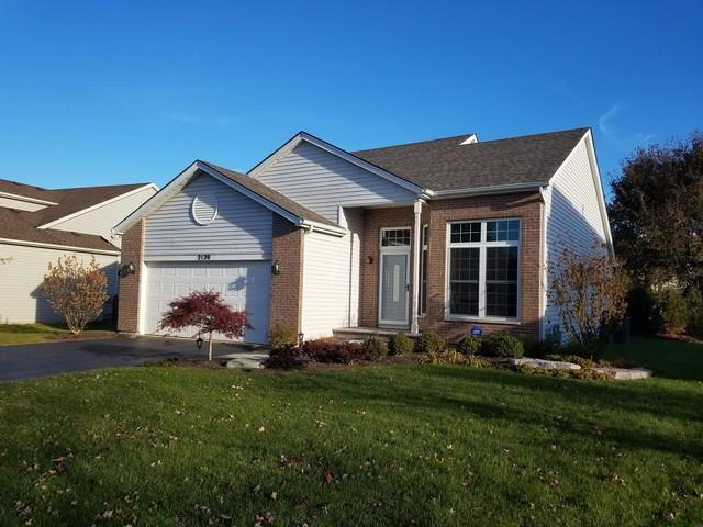 2120 Willow Lakes Drive, Plainfield, IL 60586 (MLS #10138344) :: Baz Realty Network   Keller Williams Preferred Realty