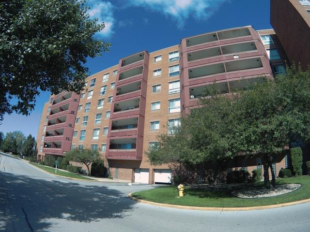100 Park Avenue #305, Calumet City, IL 60409 (MLS #10138360) :: Ani Real Estate