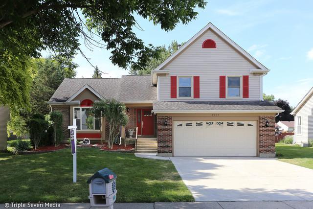 2509 Lawn Court, Schaumburg, IL 60193 (MLS #10138432) :: Domain Realty