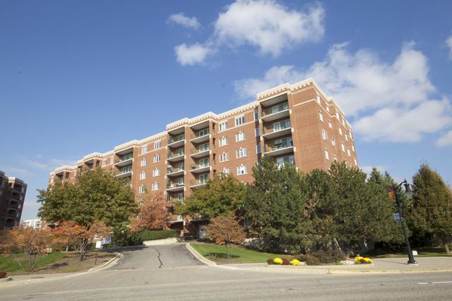 650 S River Road #408, Des Plaines, IL 60016 (MLS #10138465) :: Ani Real Estate