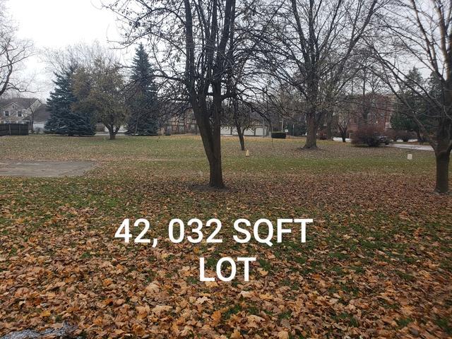 35 Lengl Drive, Schaumburg, IL 60193 (MLS #10138564) :: Domain Realty