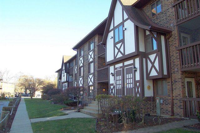 10408 Circle Drive #107, Oak Lawn, IL 60453 (MLS #10138572) :: Ani Real Estate