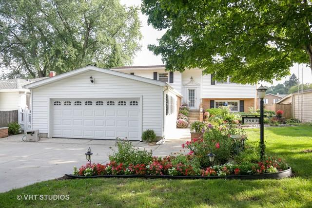 2903 Gregg Drive, Mchenry, IL 60050 (MLS #10138593) :: Lewke Partners
