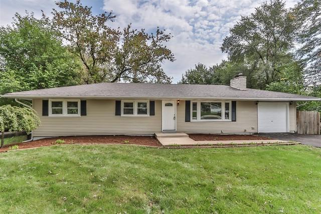 0N461 Ellis Avenue, Wheaton, IL 60187 (MLS #10138597) :: Ani Real Estate