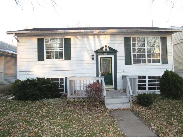 236 N Monroe Avenue, Bradley, IL 60915 (MLS #10138698) :: Ani Real Estate