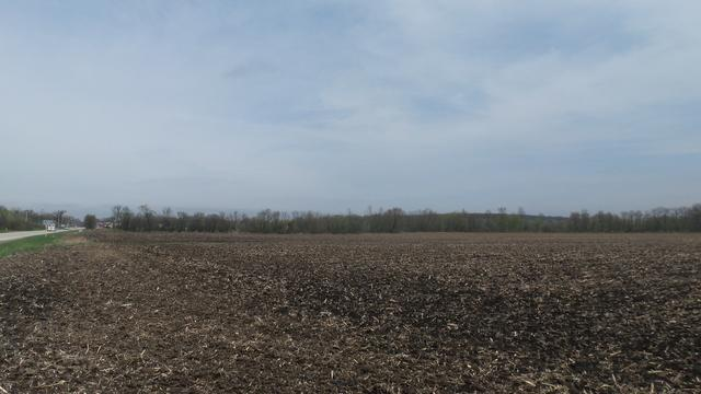 Lot 0 Il Rt 31, Richmond, IL 60071 (MLS #10138713) :: The Spaniak Team