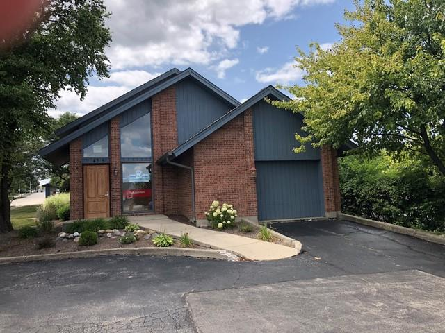 435 Roselle Road, Schaumburg, IL 60193 (MLS #10138746) :: Domain Realty