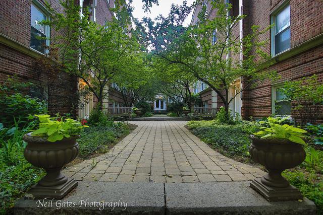 5119 N Kenmore Avenue 2E, Chicago, IL 60640 (MLS #10138981) :: John Lyons Real Estate