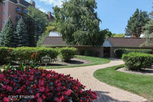 203 Rivershire Lane #104, Lincolnshire, IL 60069 (MLS #10139024) :: Helen Oliveri Real Estate