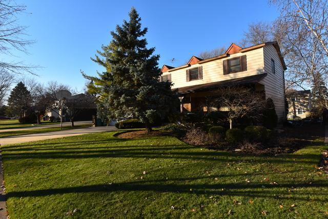 172 Downing Road, Buffalo Grove, IL 60089 (MLS #10139073) :: Helen Oliveri Real Estate