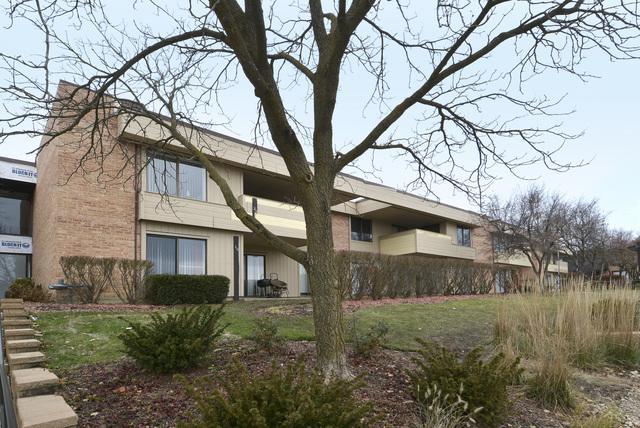 1265 N Sterling Avenue #113, Palatine, IL 60067 (MLS #10139119) :: Leigh Marcus   @properties