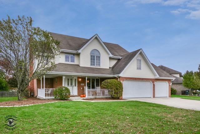 2007 Finborough Circle, New Lenox, IL 60451 (MLS #10139210) :: Ani Real Estate