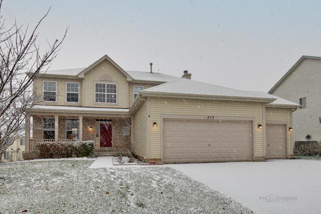 253 W Biros Lane, Round Lake, IL 60073 (MLS #10139298) :: The Wexler Group at Keller Williams Preferred Realty