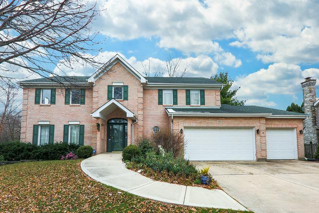 715 W Charles Court, Addison, IL 60101 (MLS #10139304) :: Domain Realty