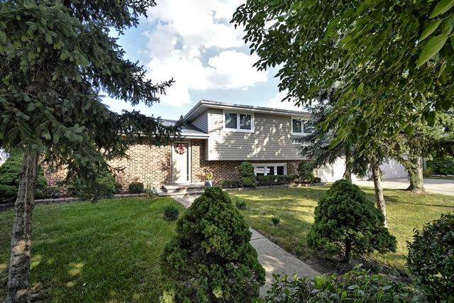 7351 W 84th Street, Bridgeview, IL 60455 (MLS #10139348) :: Domain Realty