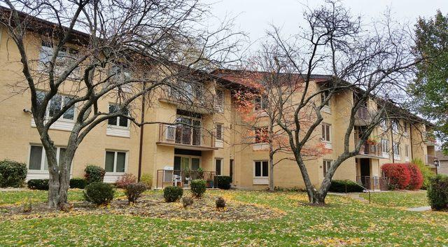 2400 W Talcott Road #225, Park Ridge, IL 60068 (MLS #10139364) :: T2K Properties