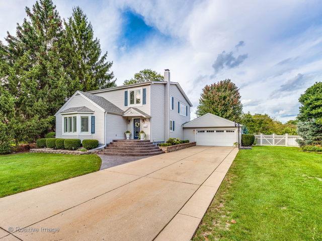 1304 W Vine Street, Arlington Heights, IL 60005 (MLS #10139648) :: T2K Properties