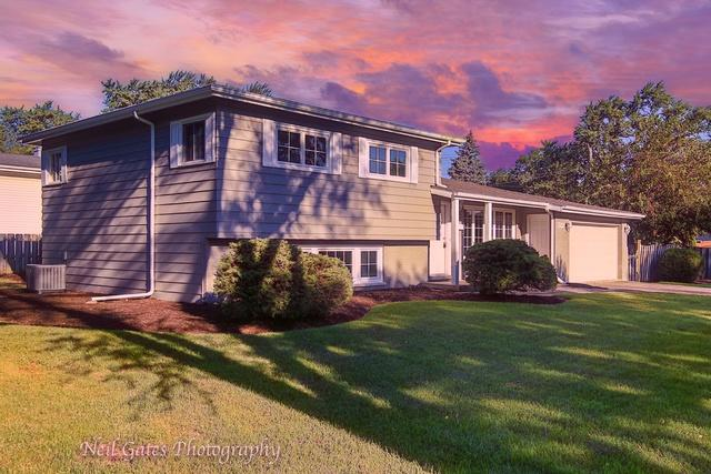 722 S Harvard Avenue, Addison, IL 60101 (MLS #10139730) :: Domain Realty
