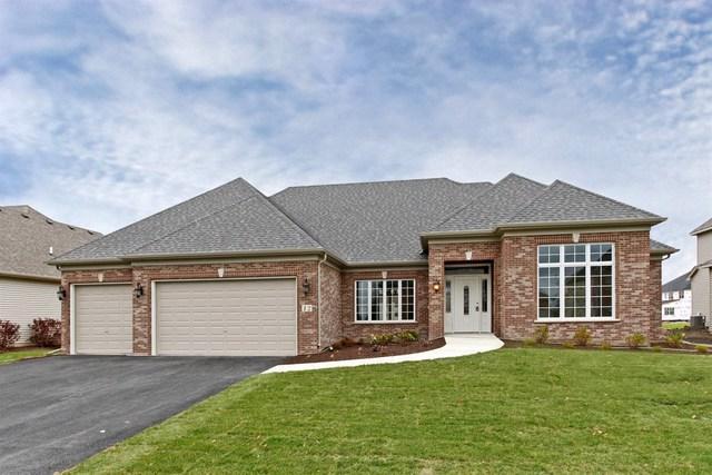 8055 Shadow Creek Lane, Yorkville, IL 60560 (MLS #10139781) :: Baz Realty Network | Keller Williams Preferred Realty