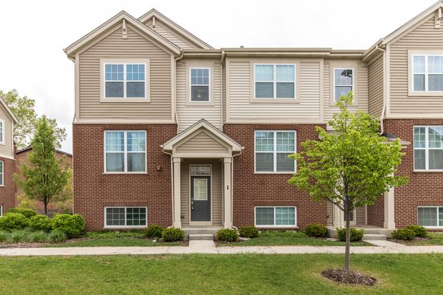 100 S Dee Road, Park Ridge, IL 60068 (MLS #10139806) :: T2K Properties
