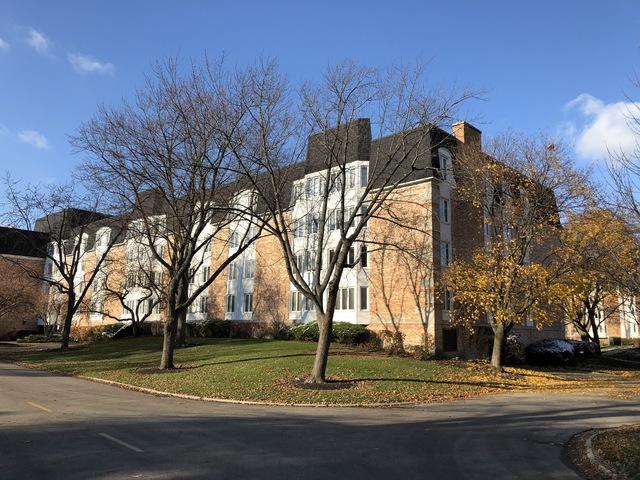 200 Lake Boulevard #408, Buffalo Grove, IL 60089 (MLS #10139961) :: T2K Properties