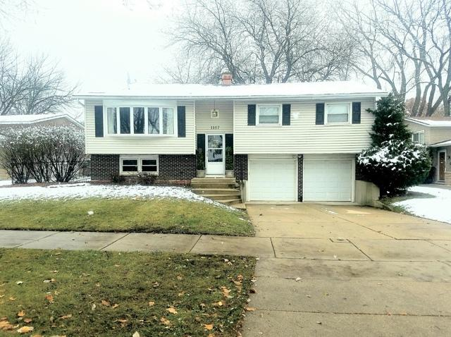 1107 N Greenfield Lane, Mount Prospect, IL 60056 (MLS #10140579) :: Domain Realty