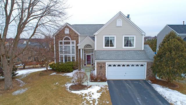 10 Dover Court, Algonquin, IL 60102 (MLS #10140994) :: HomesForSale123.com