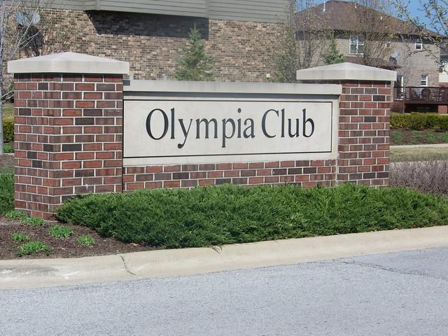 20024 Aegina Drive, Olympia Fields, IL 60461 (MLS #10141063) :: Leigh Marcus   @properties