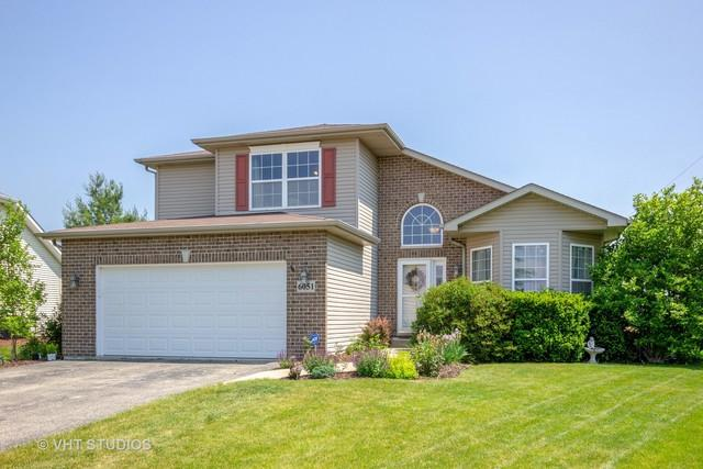 6051 Old Creek Lane, Joliet, IL 60431 (MLS #10141277) :: Ani Real Estate