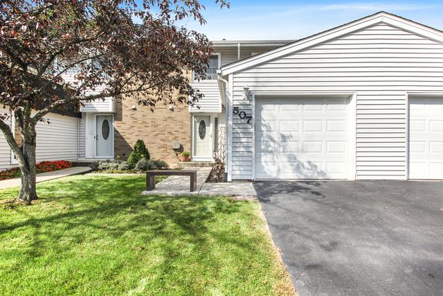 507 Julie Road #507, Bolingbrook, IL 60440 (MLS #10144800) :: Baz Realty Network | Keller Williams Preferred Realty