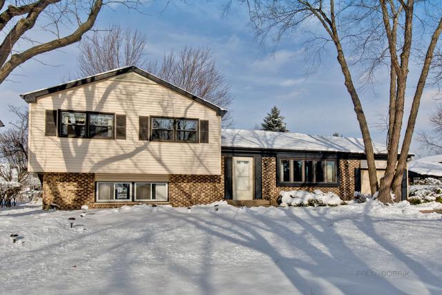 866 Camelot Drive, Crystal Lake, IL 60014 (MLS #10146251) :: Lewke Partners