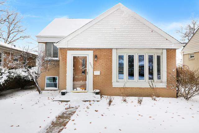 9035 28th Street, Brookfield, IL 60513 (MLS #10146371) :: Leigh Marcus | @properties
