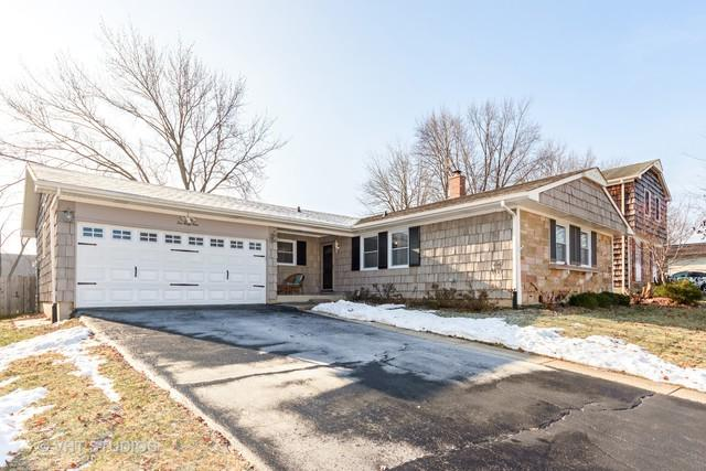 1049 Whitehall Drive, Buffalo Grove, IL 60089 (MLS #10146523) :: Helen Oliveri Real Estate