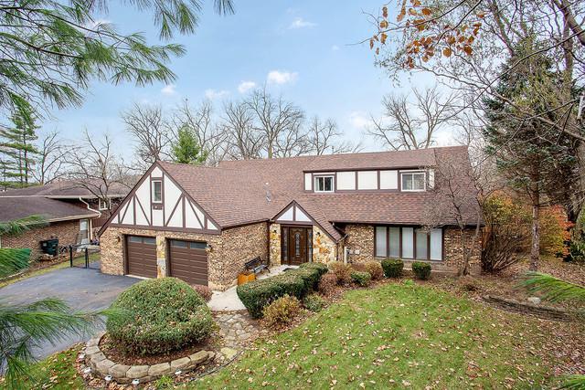 14031 S Shoshoni Drive, Homer Glen, IL 60491 (MLS #10147072) :: The Wexler Group at Keller Williams Preferred Realty