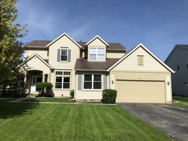 801 Village Road, Crystal Lake, IL 60014 (MLS #10147451) :: Baz Realty Network   Keller Williams Preferred Realty