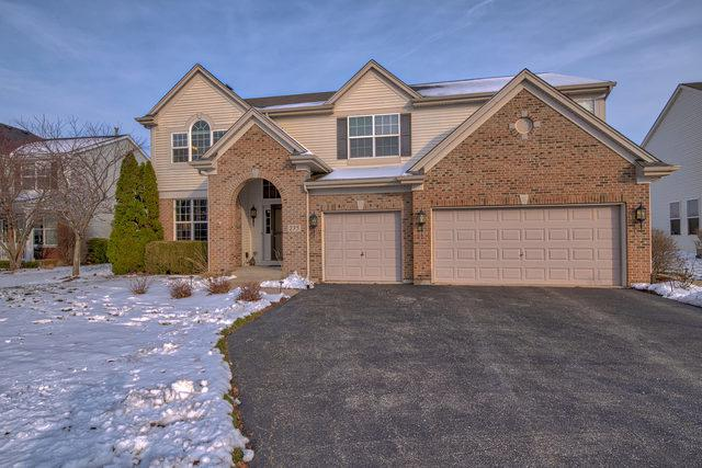 235 Morgan Valley Drive, Oswego, IL 60543 (MLS #10147470) :: Baz Realty Network | Keller Williams Preferred Realty