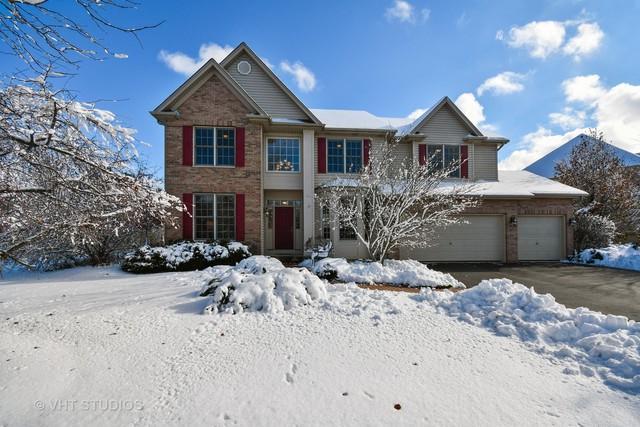 274 Johnson Woods Drive, Batavia, IL 60510 (MLS #10147543) :: The Dena Furlow Team - Keller Williams Realty