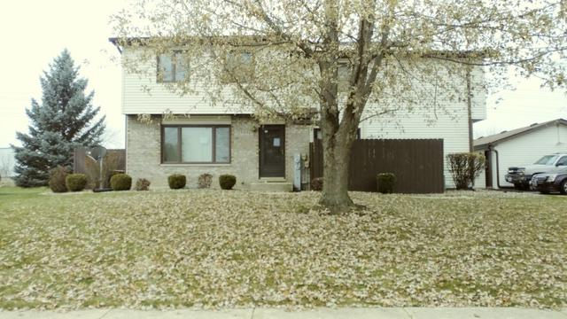 1043 Southgate Road #22, New Lenox, IL 60451 (MLS #10147634) :: Leigh Marcus | @properties