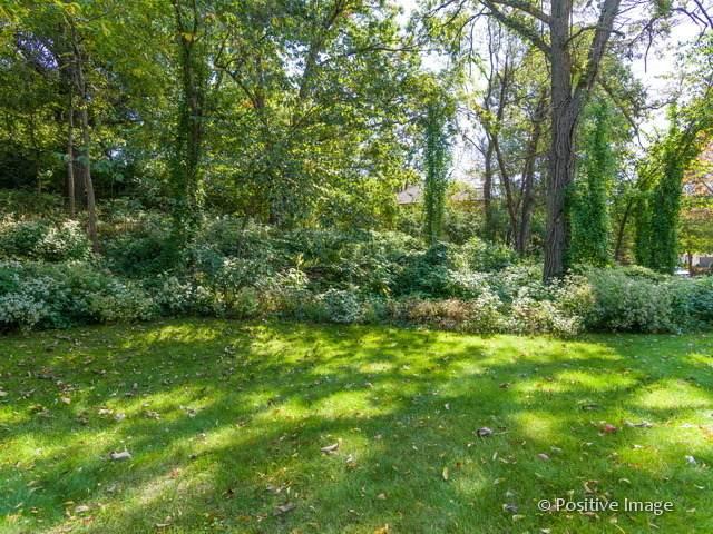 Lot 5 Glenmora Avenue, Burr Ridge, IL 60527 (MLS #10148558) :: Suburban Life Realty